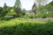 Grundstück Glücksburg - Oliver Klenz Immobilien