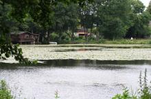 Immobilie mit Wasserblick Bollingstedt - Oliver Klenz Immobilien